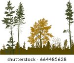 illustration with brown forest... | Shutterstock .eps vector #664485628