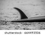 surfboard on the beach  fin... | Shutterstock . vector #664493506
