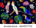 brazilian tropical forest.... | Shutterstock .eps vector #664507732
