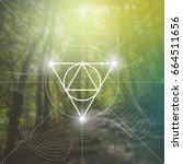 sacred geometry illustration...   Shutterstock .eps vector #664511656