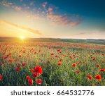 tuscan scene flower  floral ... | Shutterstock . vector #664532776