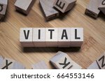 Small photo of Vital Word In Wooden Cube