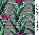 seamless tropical pattern with... | Shutterstock .eps vector #664565362