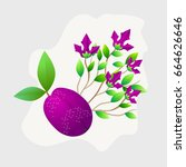 plum fruit whole with green... | Shutterstock .eps vector #664626646
