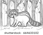 raccoon coloring book. vector... | Shutterstock .eps vector #664633102
