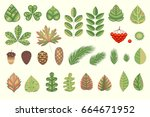 a natural herbal collection for ...   Shutterstock .eps vector #664671952