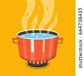 boiling water in pan. cooking... | Shutterstock .eps vector #664738435