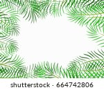 tropical jungle with leave... | Shutterstock .eps vector #664742806
