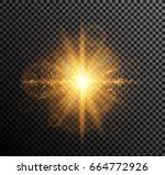 vector illustration of golden... | Shutterstock .eps vector #664772926