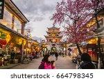 dali  china   jan 6   the... | Shutterstock . vector #664798345