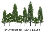 trees in a row isolated on...   Shutterstock . vector #664813156
