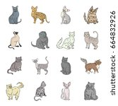 cat breeds set icons in cartoon ... | Shutterstock . vector #664832926