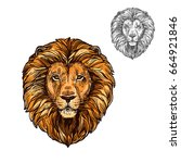 lion african wild animal head... | Shutterstock .eps vector #664921846