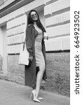 young beautiful stylish woman...   Shutterstock . vector #664923502