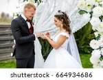 newlyweds at the wedding... | Shutterstock . vector #664934686