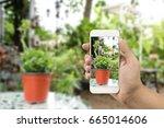 smartphone pictures. | Shutterstock . vector #665014606