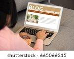 blog social media information... | Shutterstock . vector #665066215