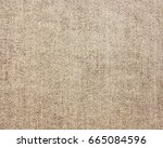 textured fabric background | Shutterstock . vector #665084596