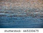 icy sea baltic sea | Shutterstock . vector #665233675