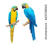 Colorful Vector Illustration O...