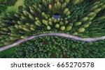 Aerial View Of Pokljuka Forest...