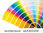 fan with color palette  guide... | Shutterstock . vector #665302396