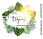 Summer Tropical Background...