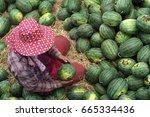 sritheph thailand june 28  2017 ...   Shutterstock . vector #665334436