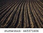 black soil plowed field. earth... | Shutterstock . vector #665371606