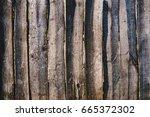 close up of line light brown... | Shutterstock . vector #665372302