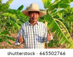 middle aged farmer and his farm | Shutterstock . vector #665502766