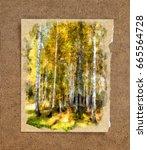 tall slender white birch trunks ... | Shutterstock . vector #665564728