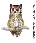 hand drawn white faced scops... | Shutterstock . vector #665609896