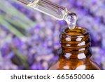 lavender oil.essential oil ... | Shutterstock . vector #665650006