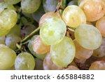 green grapes at day