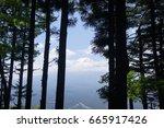 mount fuji behind tree...   Shutterstock . vector #665917426