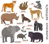 different kinds deleted species ... | Shutterstock .eps vector #665934676