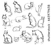 hand drawn set of cats. cats in ... | Shutterstock .eps vector #665979658