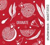 pomegranate fruit vintage... | Shutterstock .eps vector #666072052