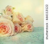 fresh roses flowers | Shutterstock . vector #666113122