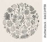 set of illustrations of plants. ... | Shutterstock .eps vector #666114958