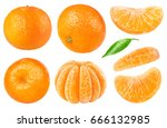 Isolated Citrus Collection....