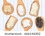 different types of rice in... | Shutterstock .eps vector #666146302