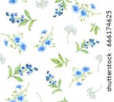 watercolor floral seamless... | Shutterstock . vector #666174625