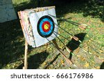 Small photo of Colored aim is arched with lot of arrows