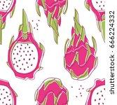 fresh exotic fruits  hand drawn ... | Shutterstock .eps vector #666224332
