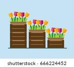 flowers in boxes. flowers in... | Shutterstock .eps vector #666224452