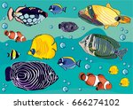 drawing sea  drawing fishes ... | Shutterstock .eps vector #666274102