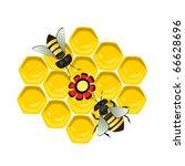 vector illustration of honeycomb | Shutterstock .eps vector #66628696