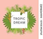 summer tropical background... | Shutterstock .eps vector #666408682